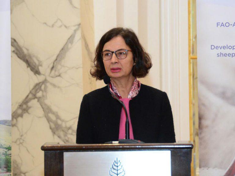 Melek Çakmak: FAO və Azərbaycan ekologiya sahəsində uğurla əməkdaşlıq edir